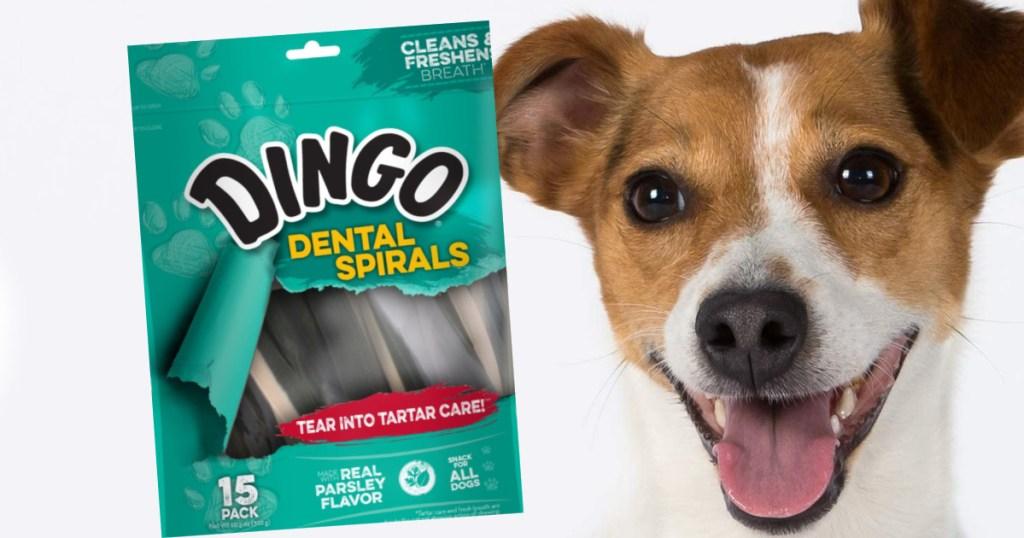 Dog with Dingo dog treats