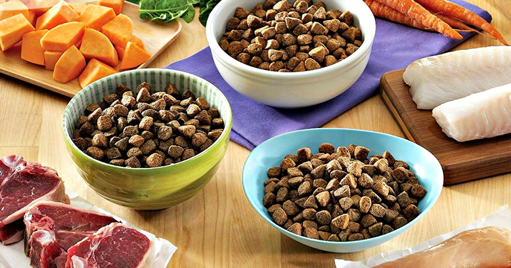 Dog food in bowls on table with various ingredients
