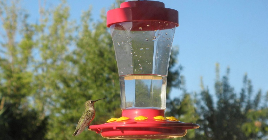 red hummingbird feeder with yellow feeding holes and hummingbird resting on it