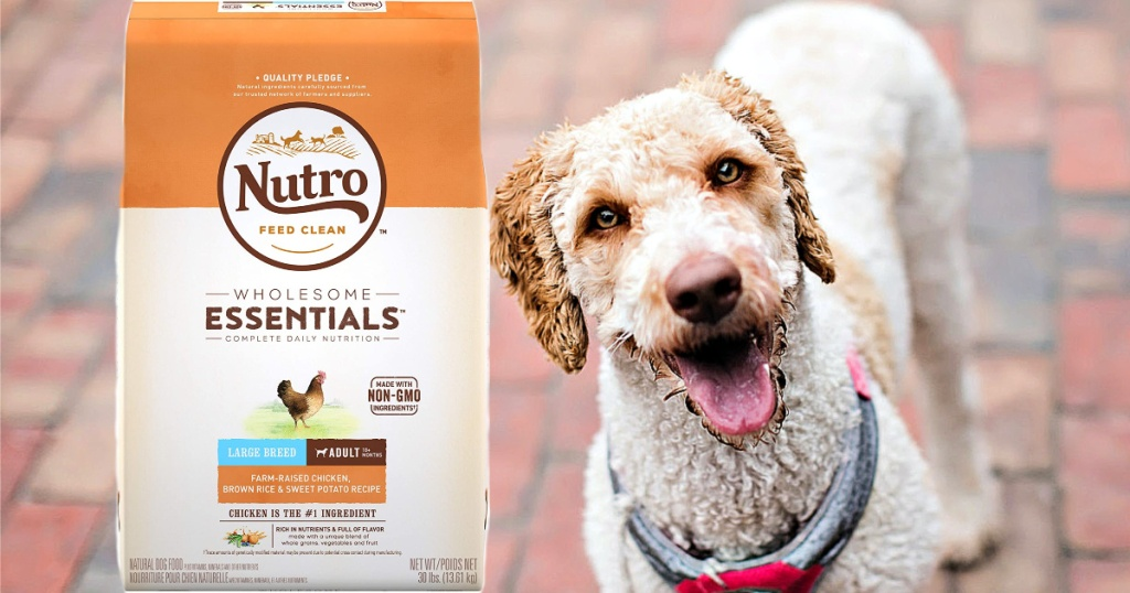 dog with bag of Nutro Wholesome Essentials Farm-Raised Chicken Large Breed Puppy Food