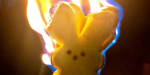 Have Leftover Easter Candy? Try Roasting Marshmallow Peeps Over a Campfire