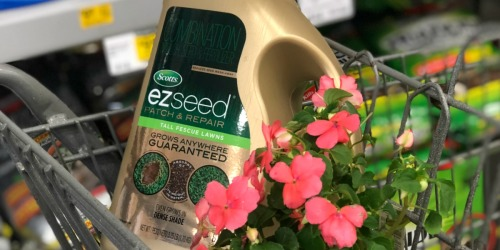 50% Off Scott's Lawn Repair EZ Seed Products on Lowe's