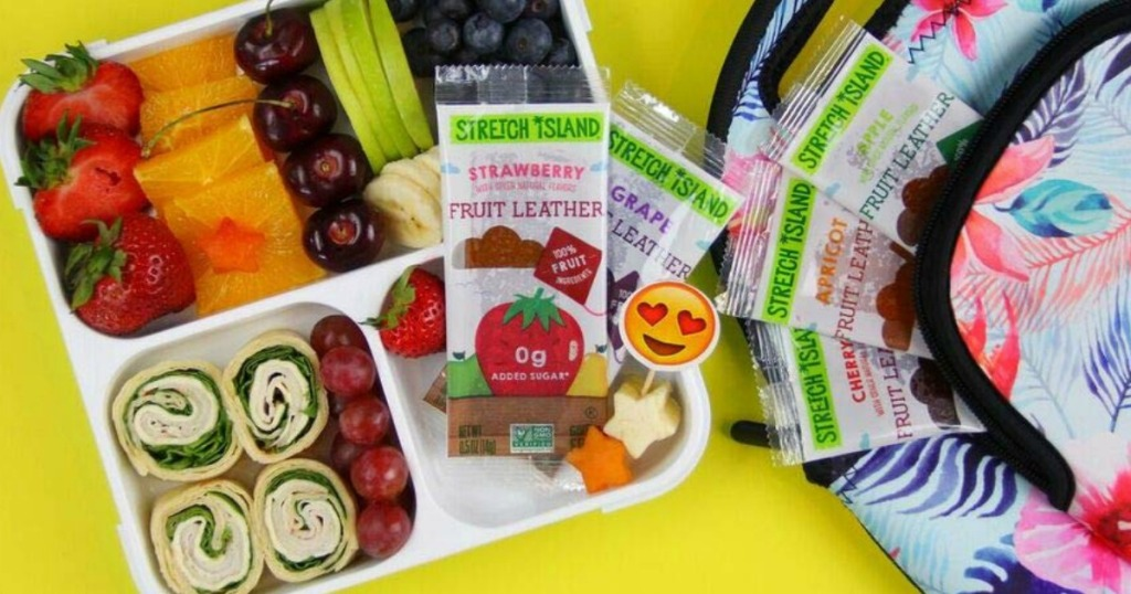 Stretch Island Fruit Strips in lunch box