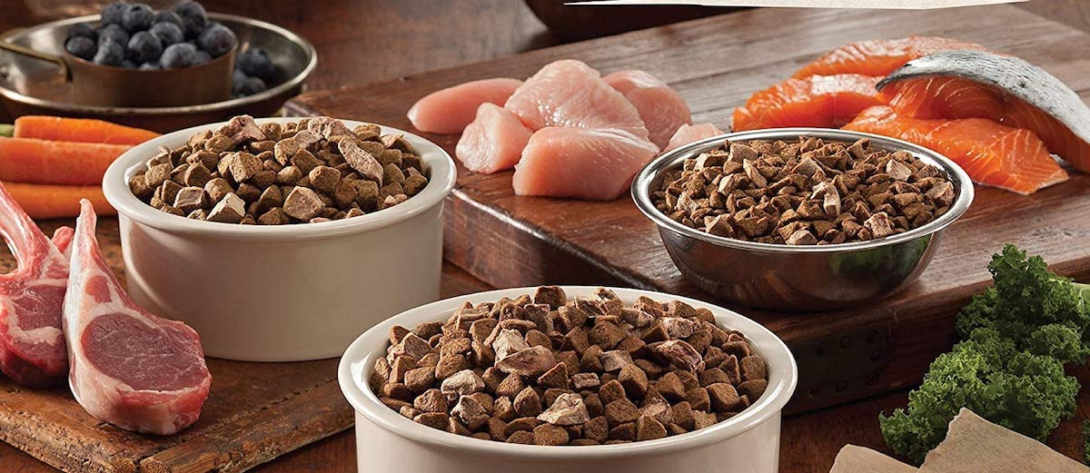 three bowls of dog food surrounded by meat