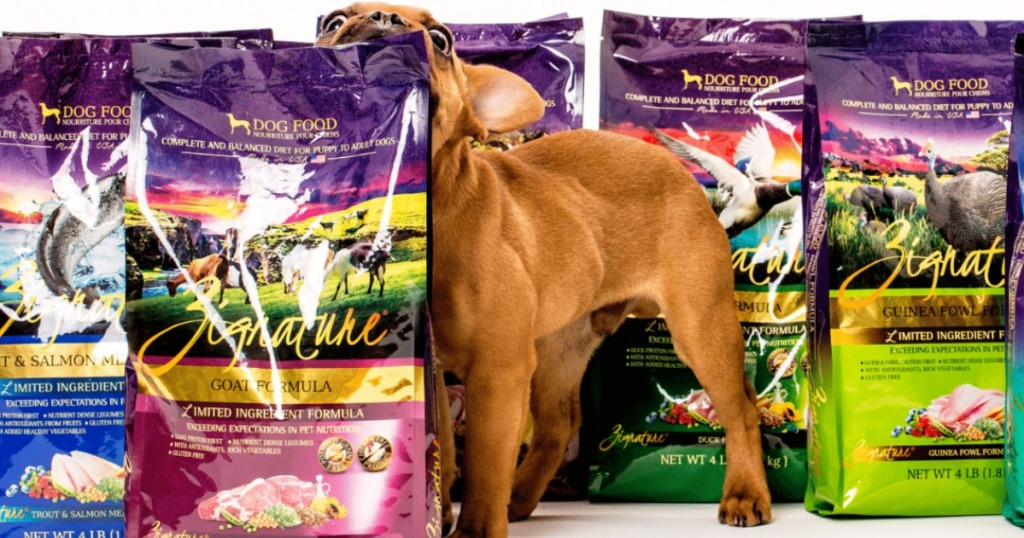 dog biting bag of Zignature dog food
