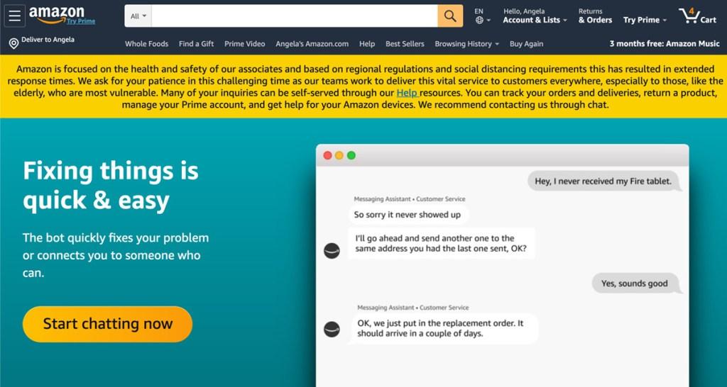screen cap of amazon chat window