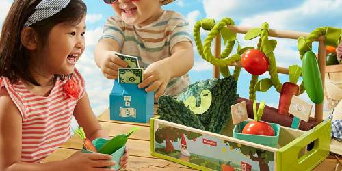 Fisher-Price Farm-to-Market Stand Just $12.92 on Amazon (Regularly $30)
