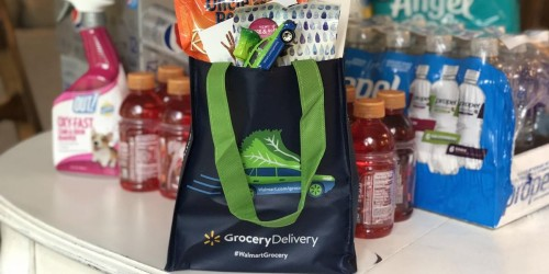 Here are the Best Grocery Delivery Services
