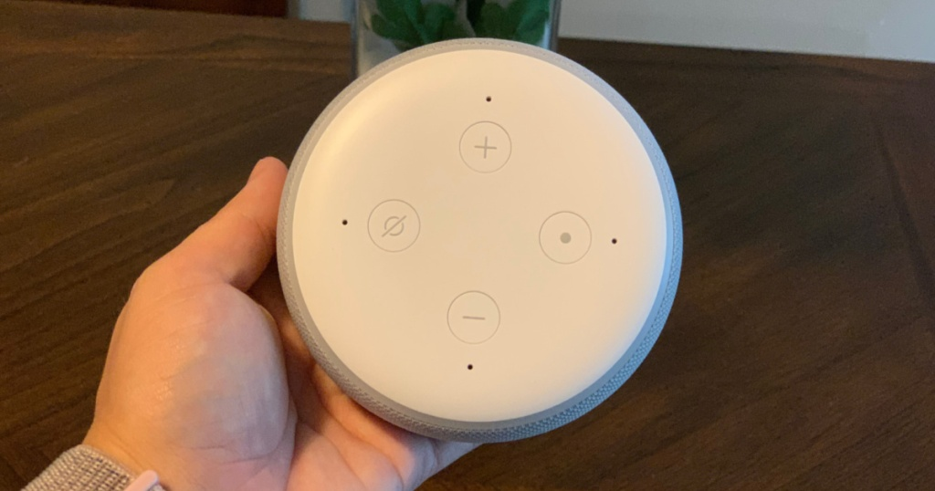 hand holding round white smart speaker above wood table and vase of flowers