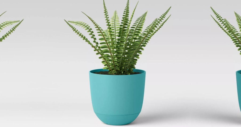 Self watering planter in blue color