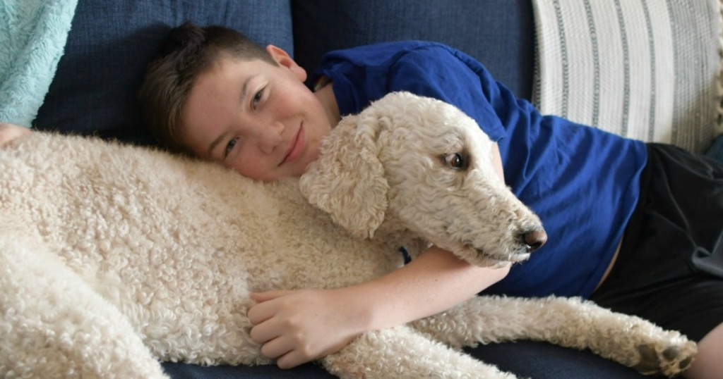 boy and dog on couch together