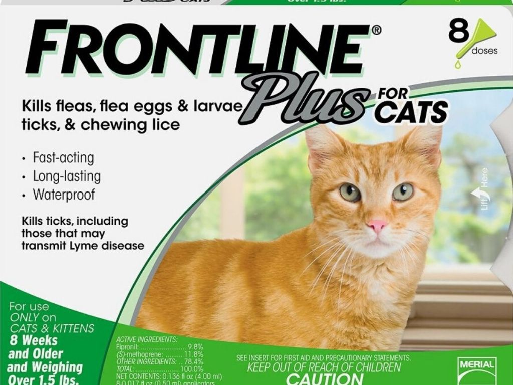 Frontline flea & tick treatments for cats