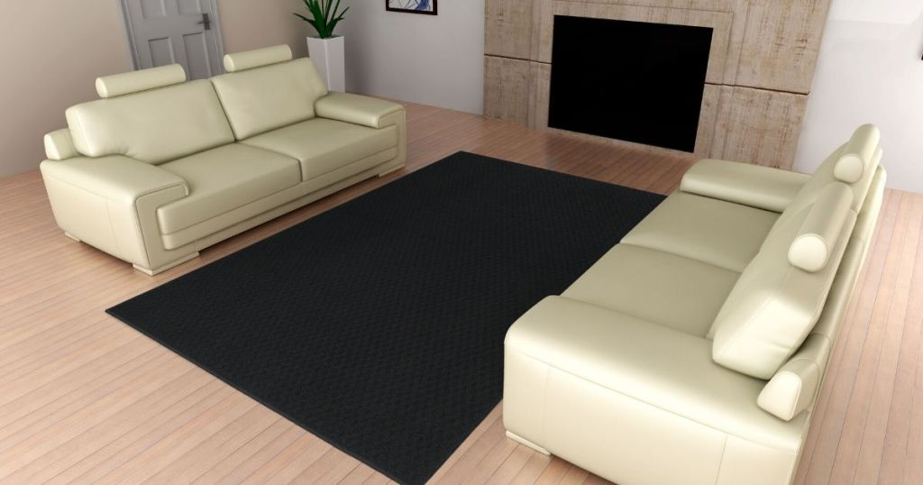 area rug between a couch and a loveseat