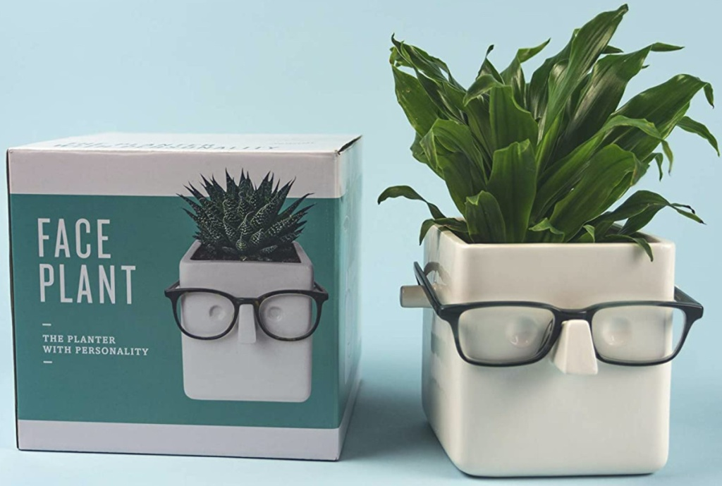 white smiling face plant put with black glasses on and its storage box