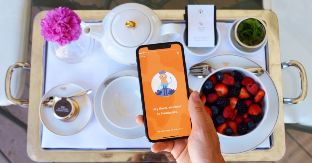 hand holding headspace app with food tray and bowl of berries