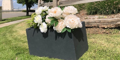 Great Deals on Plants, Planters & More + Free Shipping on HomeDepot.com