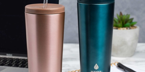 Stainless Steel 24oz Tumblers 2-Pack Only $16.99 Shipped on Costco.com | Just $8.49 Each
