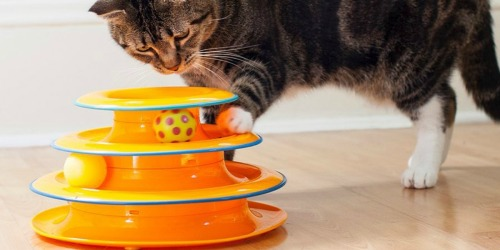 Petstages Cat Tracks Cat Toy Only $8.99 on Amazon (Regularly $25) | Over 6,000 5-Star Reviews
