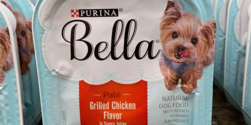 Purina Bella Wet Dog Food 12-Count Only $4.80 Shipped on Amazon | Just 40¢ Each