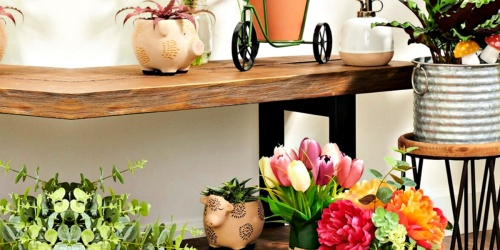 Ceramic Planters Only $6.99 Shipped for Kohl's Cardholders (Regularly $20)