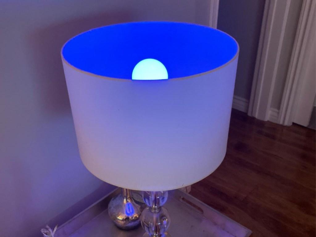blue light bulb in lamp