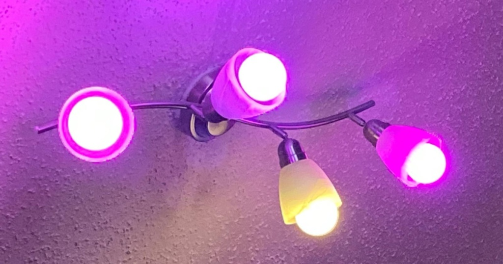 pink and yellow light bulbs on ceiling lamp