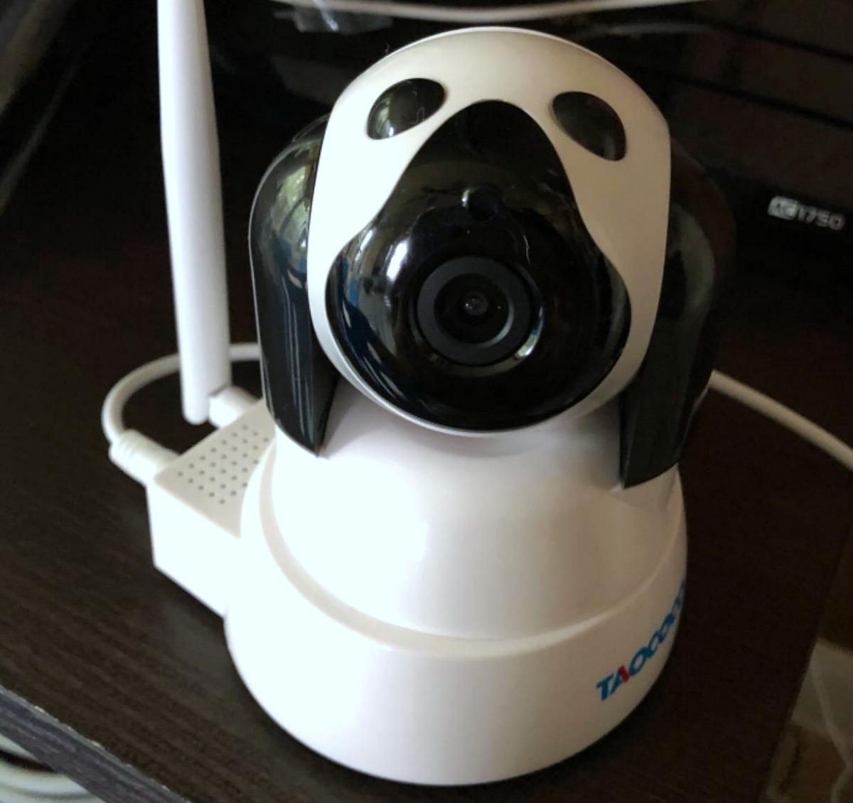 taococo dog camera that looks like robotic dog