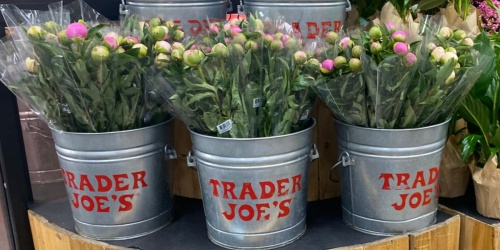 Peony 5-Stem Bunch Only $7.99 at Trader Joe's