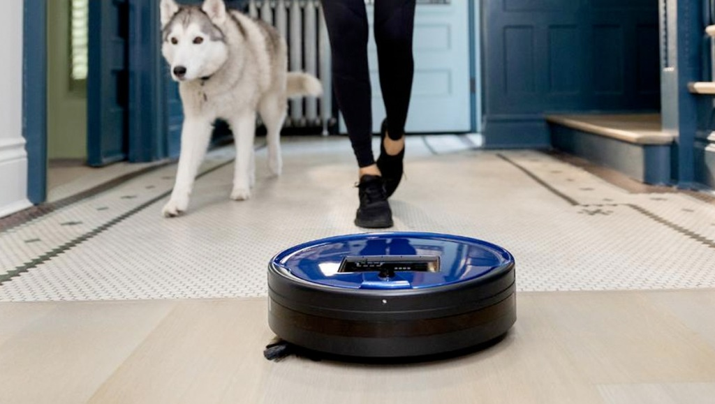 Stick Vacuum Cleaner blue robotic vacuum on floor in front of person walking with husky