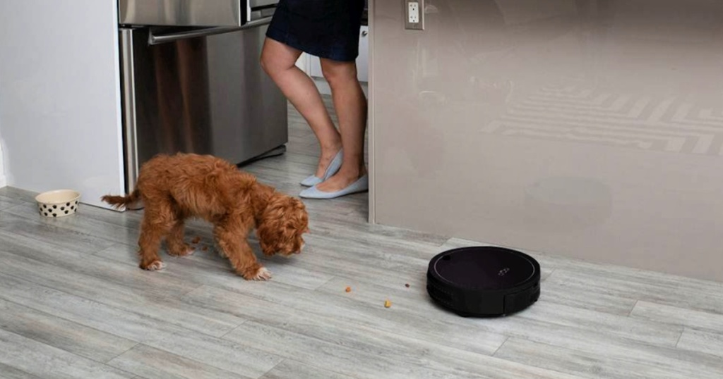 bObsweep bObi Classic Robot Vacuum & Mop with woman and dog in kitchen