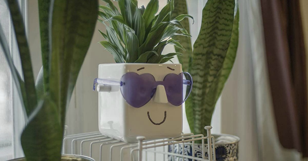white planter with sunglasses and drawn-on smile