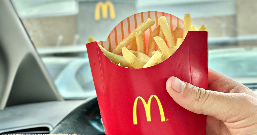 hand holding McDonald's french fries in car