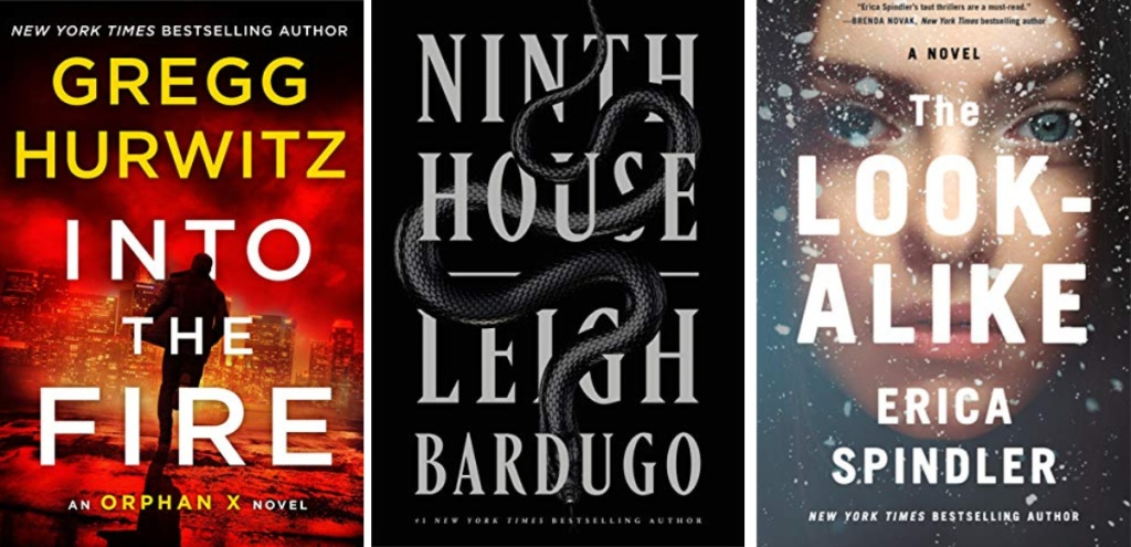 into the fire, ninth house, the look-alike ebooks
