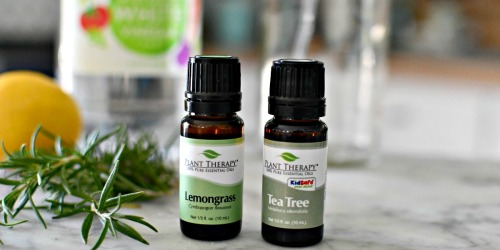 Plant Therapy 3-Piece Essential Oils Gift Sets from $16.68 Shipped