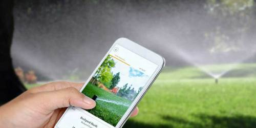 Rachio Smart Sprinkler Zone Controller Just $162 Shipped on Amazon (Regularly $230)