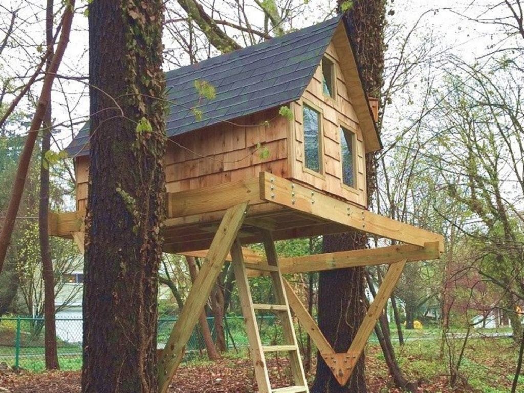treehouse with windows and ladder