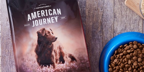 American Journey Dog Food 28lb Bags from $19 Shipped on Chewy.com (Regularly $40)