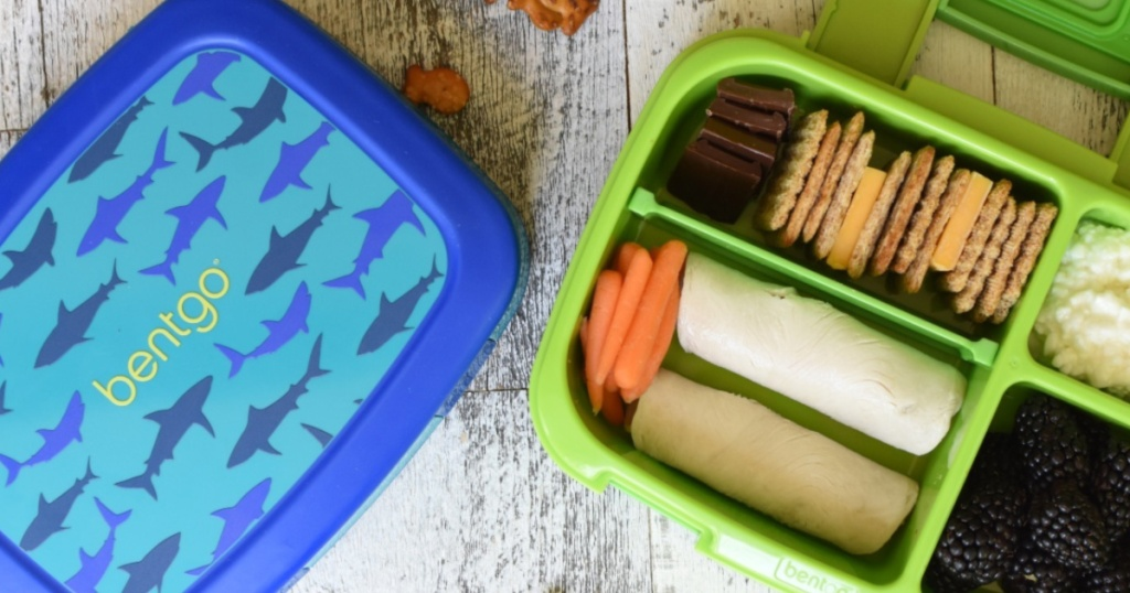 green and blue shark bentgo food container