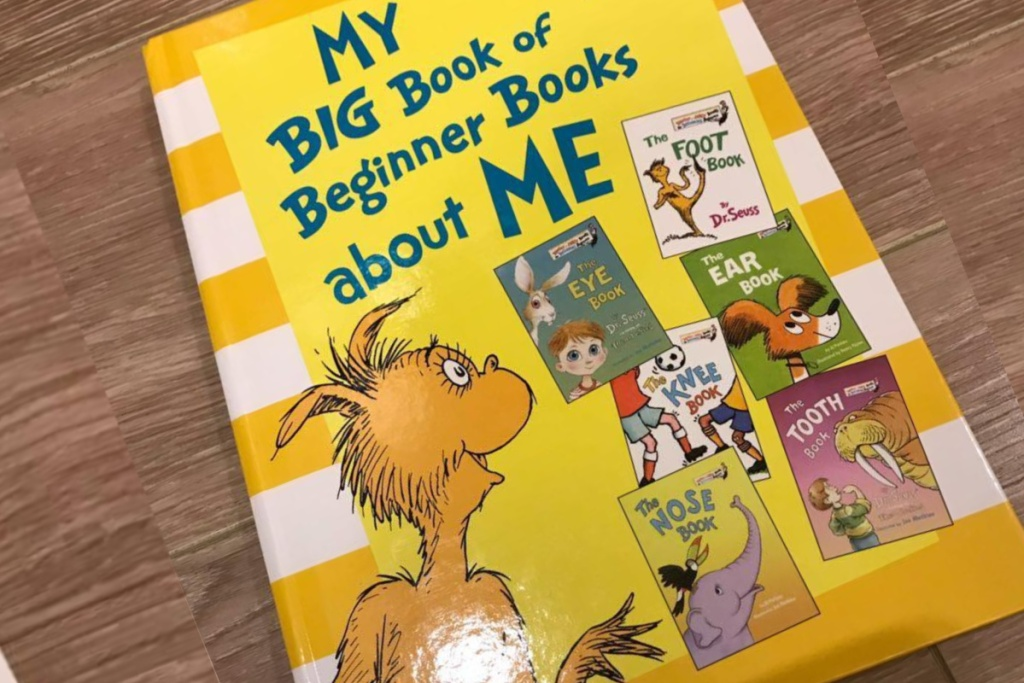 the big book about me beginner book