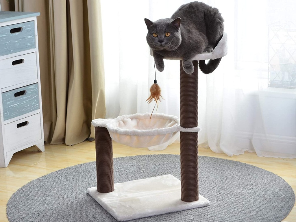 cat sitting on top of cat tree in home
