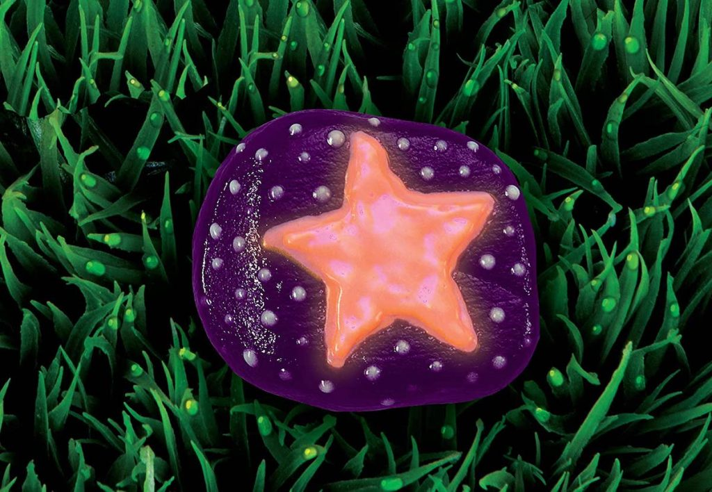 purple painted rock with pink star sitting in grass