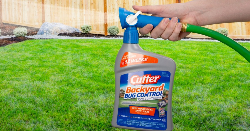 person holding a grey and blue bottle of cutter bug control attached to garden hose and spraying on grass