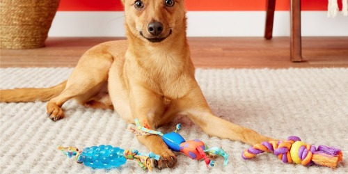 Up to 70% Off Pet Toys on Petsmart.com