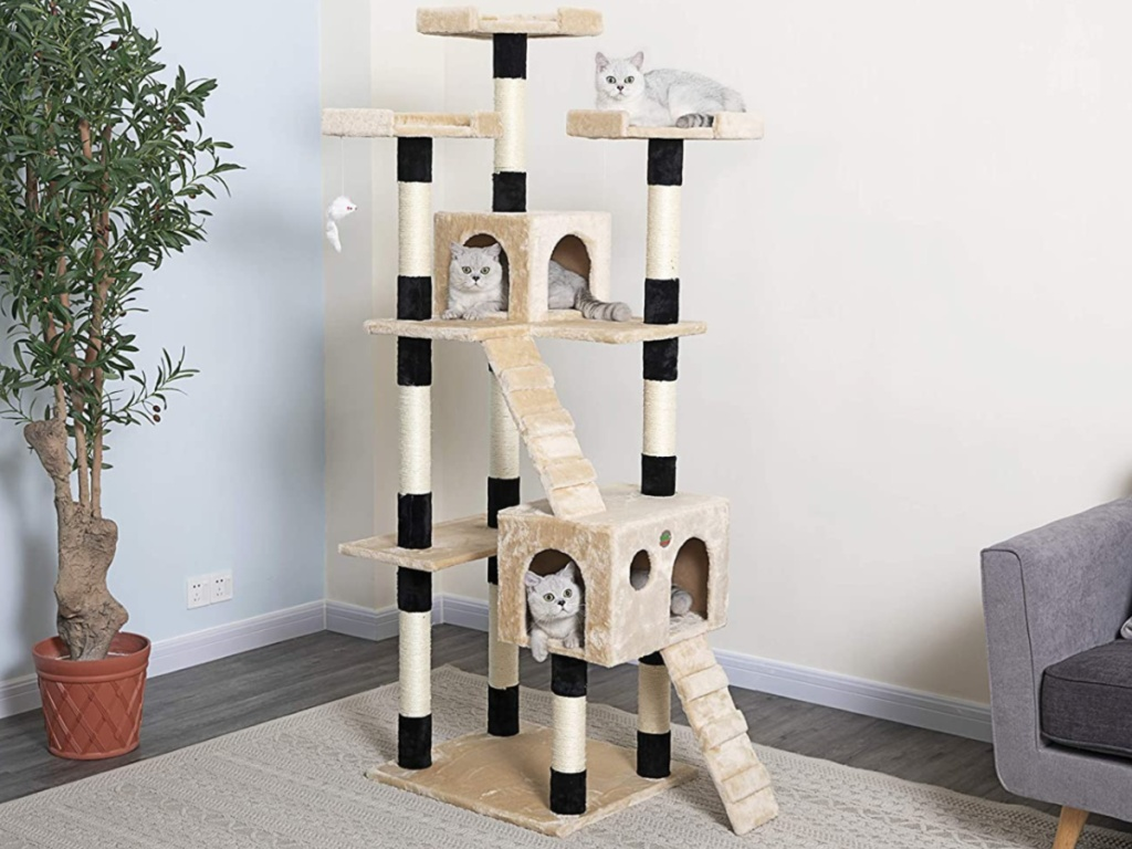 three cats on large cat tree in home