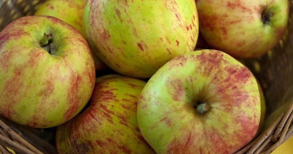 green and red apples in basket