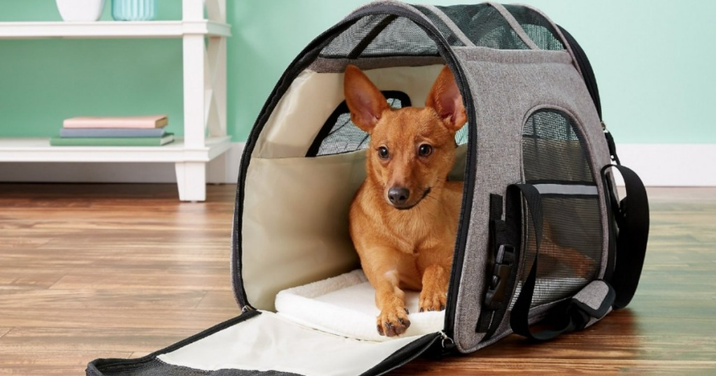 Small dog inside Mr. Peanuts pet Carrier