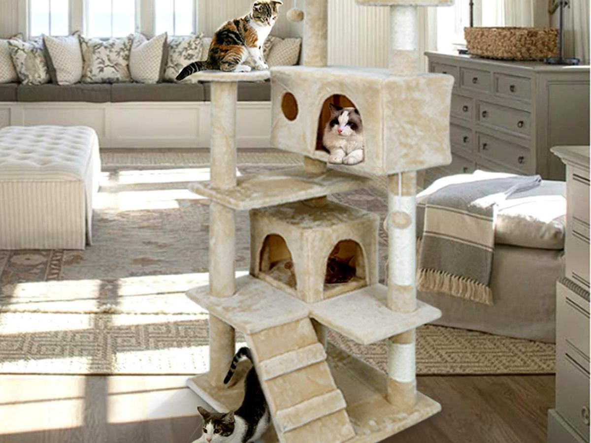 cats in large beige cat tree in home