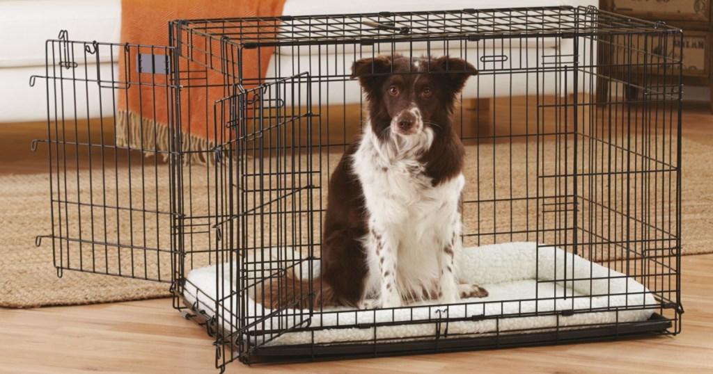 dog in black dog crate in living room