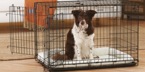 Double Door 36″ Wire Dog Crate Only $23.97 on PetSmart.com (Regularly $60)