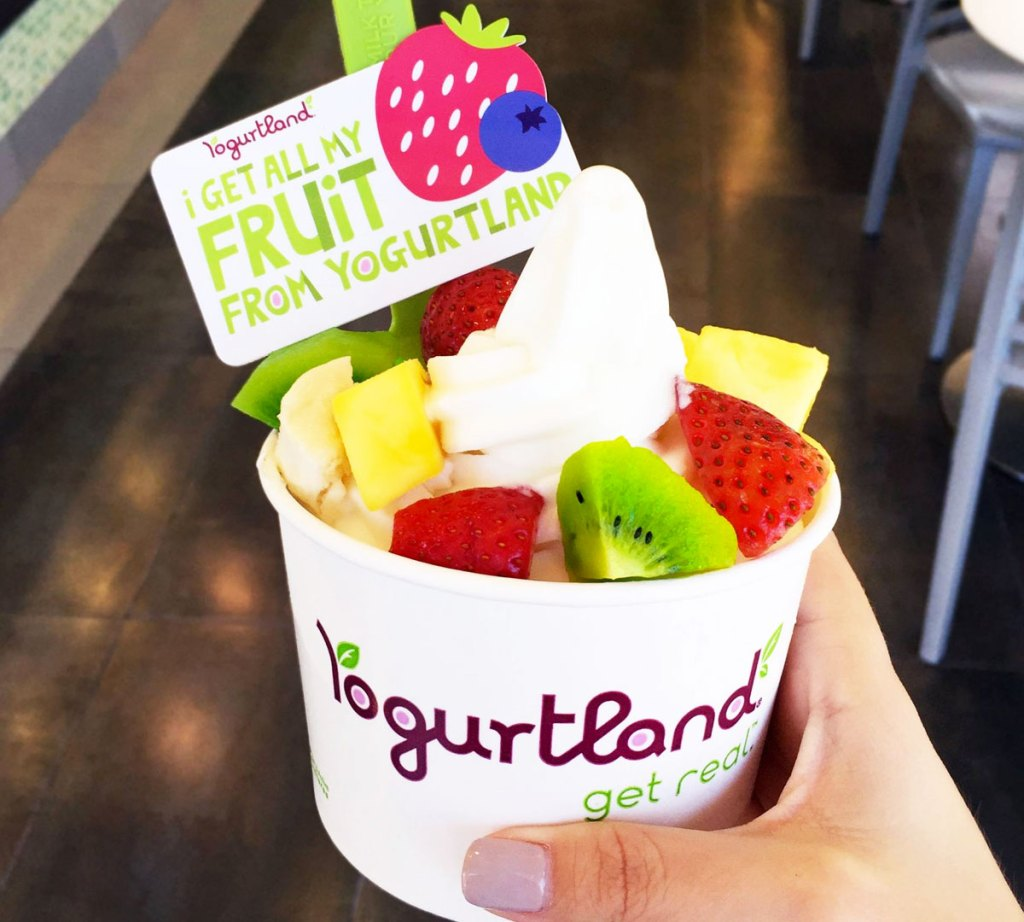 person holding cup of frozen yogurt with fruit on top